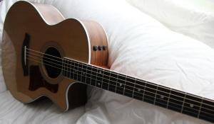 Taylor 414ce - Acoustic Guitar